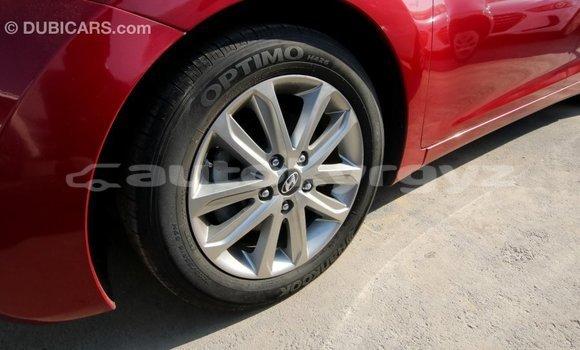 Buy Import Hyundai Elantra Red Car in Import - Dubai in Batken