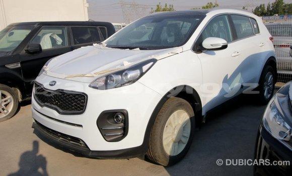 Buy Import Kia Sportage White Car in Import - Dubai in Batken