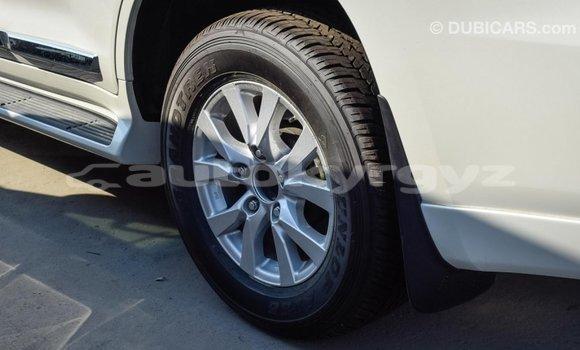 Buy Import Toyota Land Cruiser White Car in Import - Dubai in Batken